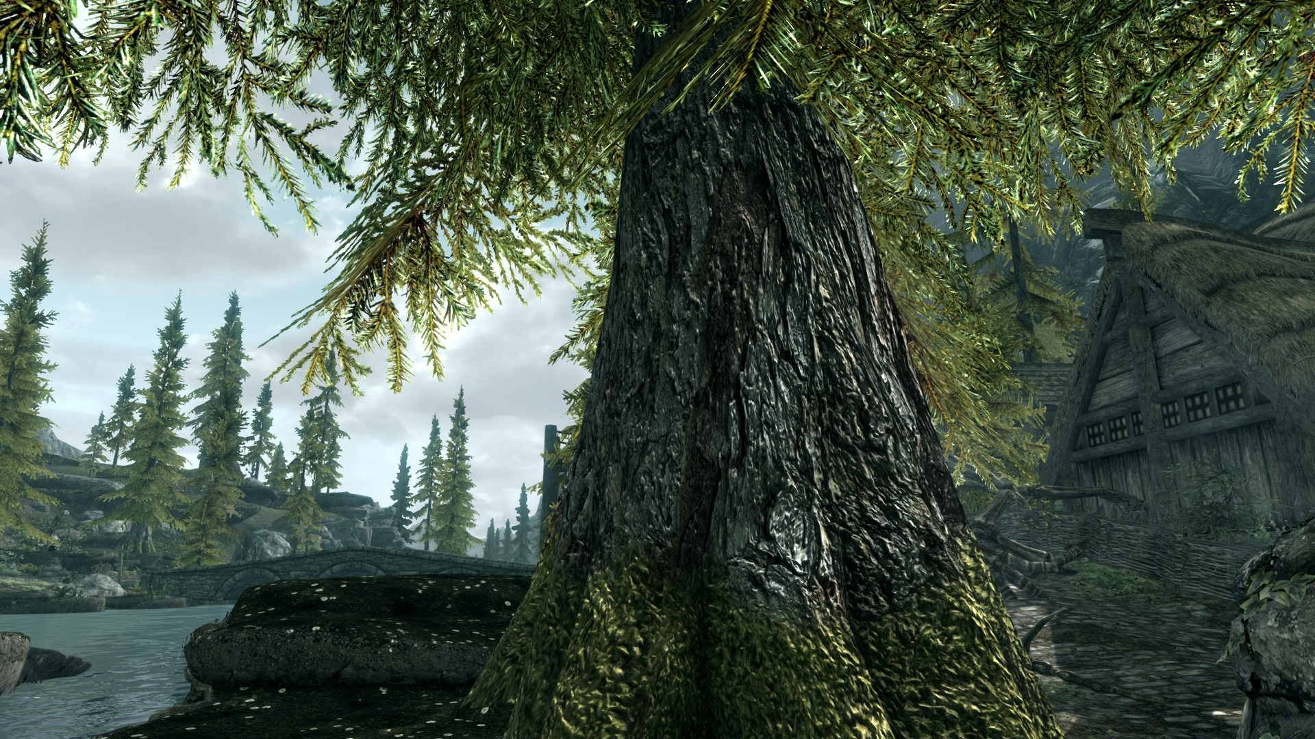 Visually Enhance The Elders Scroll V: Skyrim with these Awesome