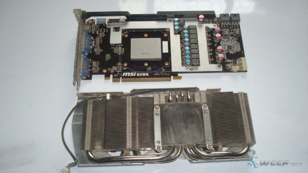 DSC05037 (Large)