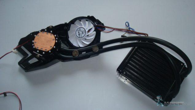 DSC05041 (Large)