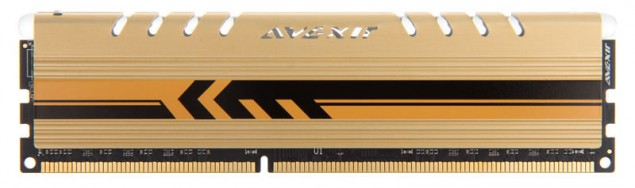 Avexir Gold Series Ram Memory