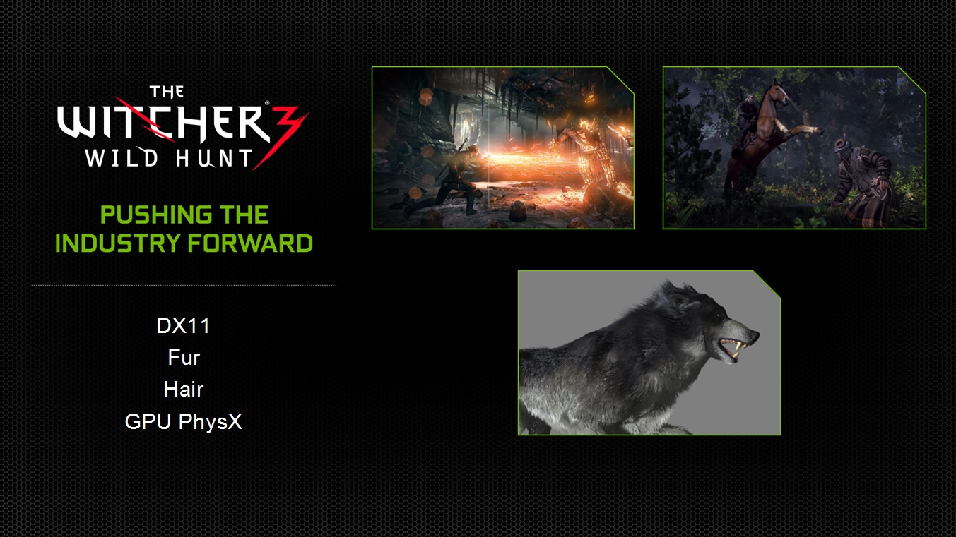 NVIDIA Demonstrates Witcher 3 With Hair Works - Talks Hair