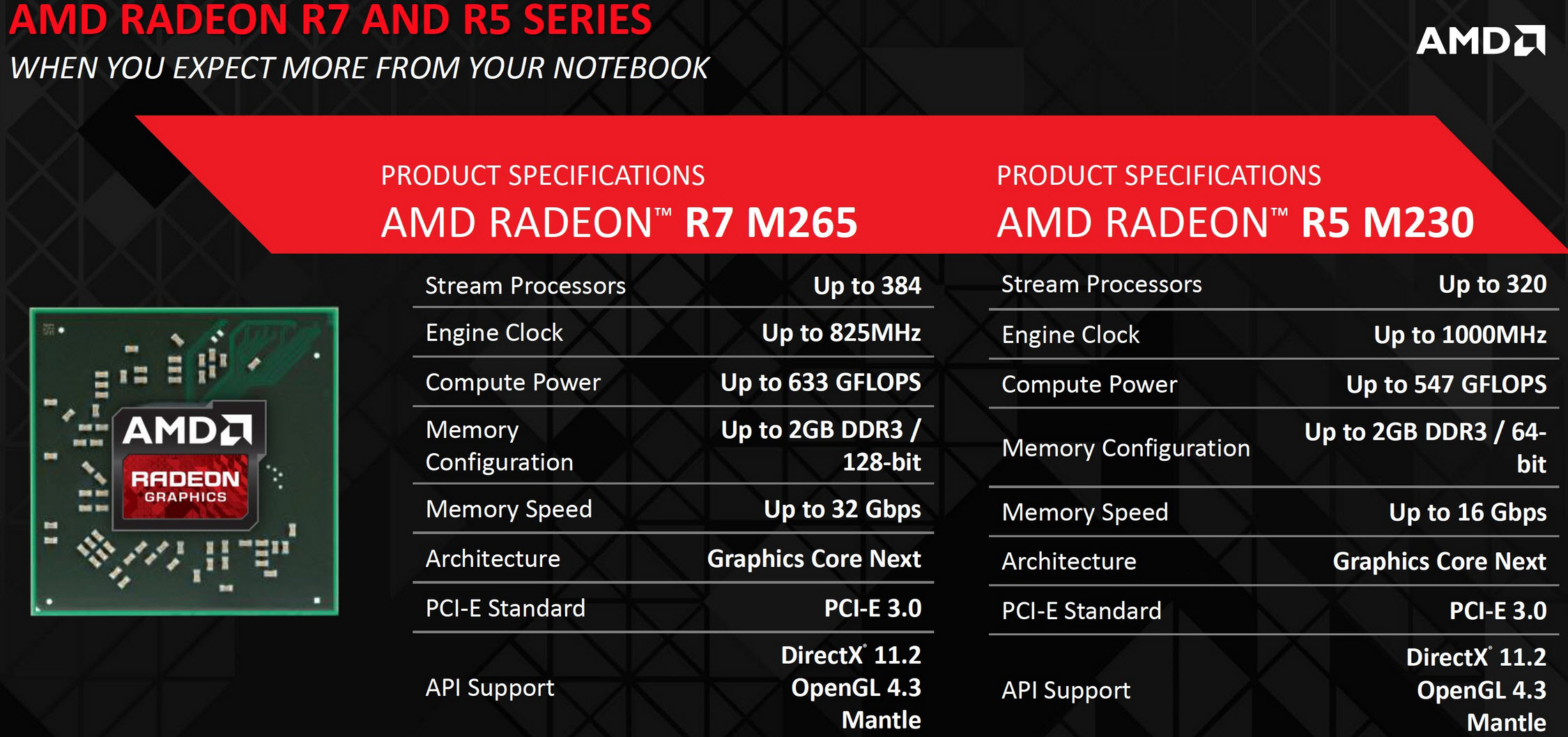 AMD Radeon R5 Graphics Drivers for Windows 10