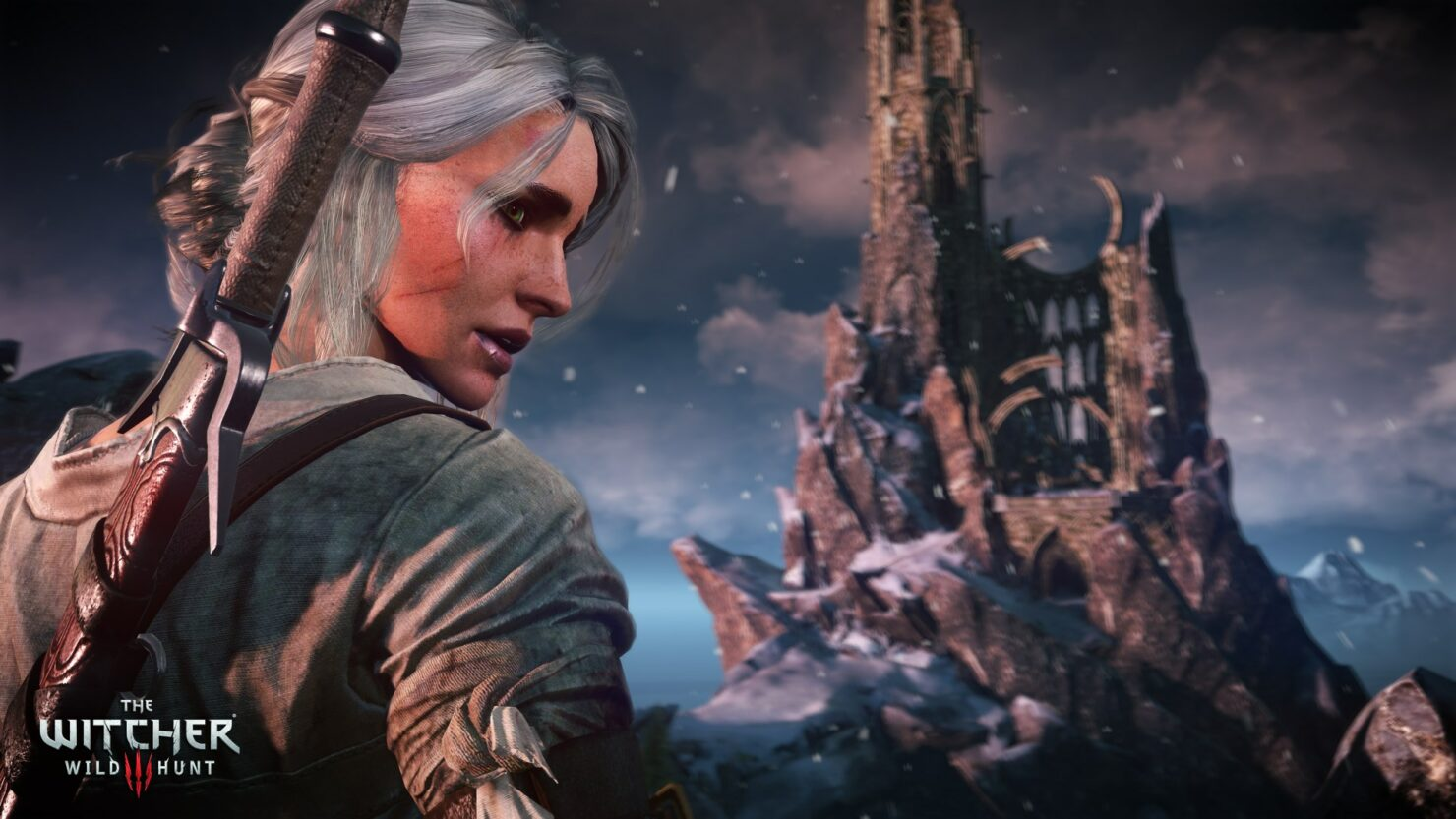 the-witcher-3-10