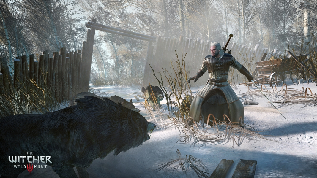 the-witcher-3-1-4
