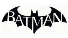 bm-arkham-city-sticker