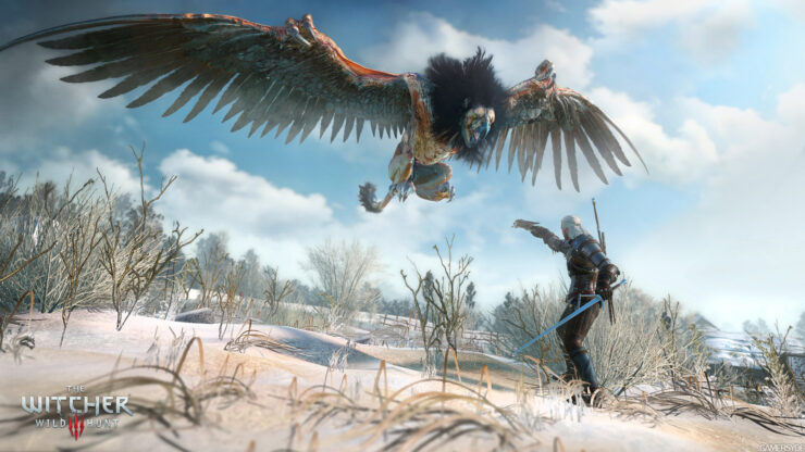 image_the_witcher_3_wild_hunt-26498-2651_0004