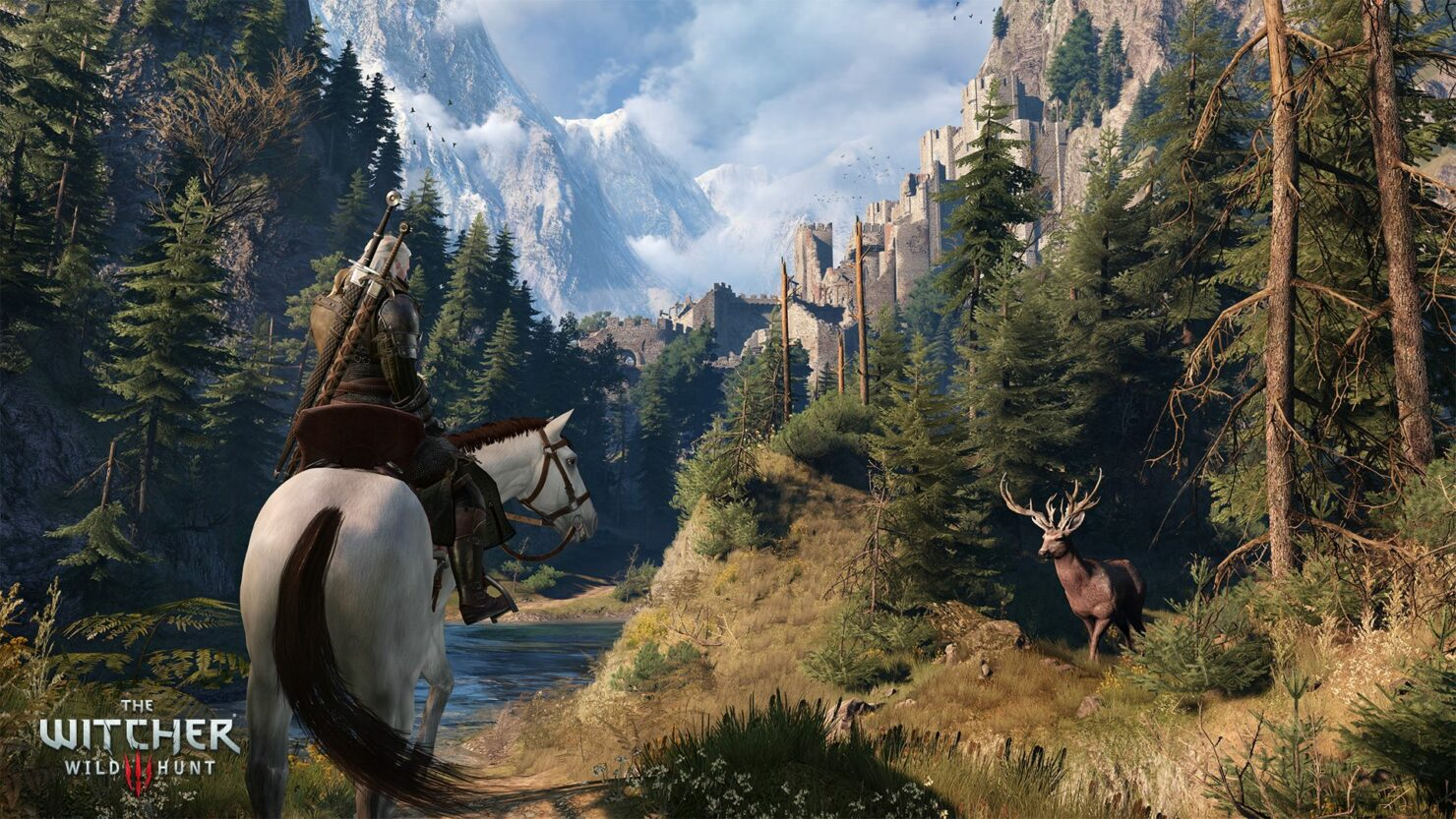the-witcher-3-39