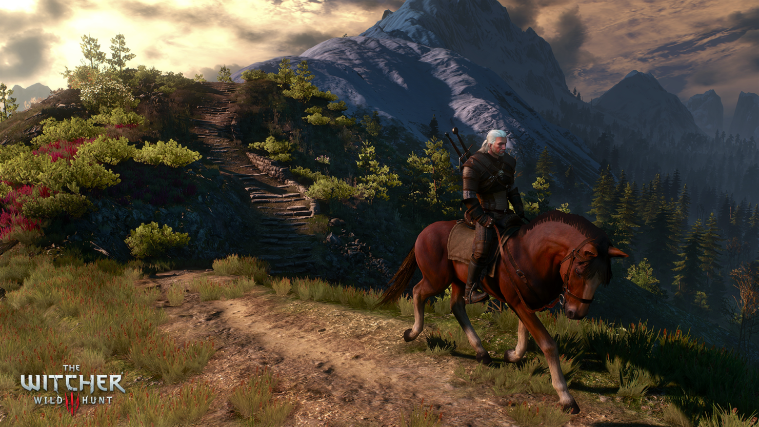 the-witcher-3-1-6