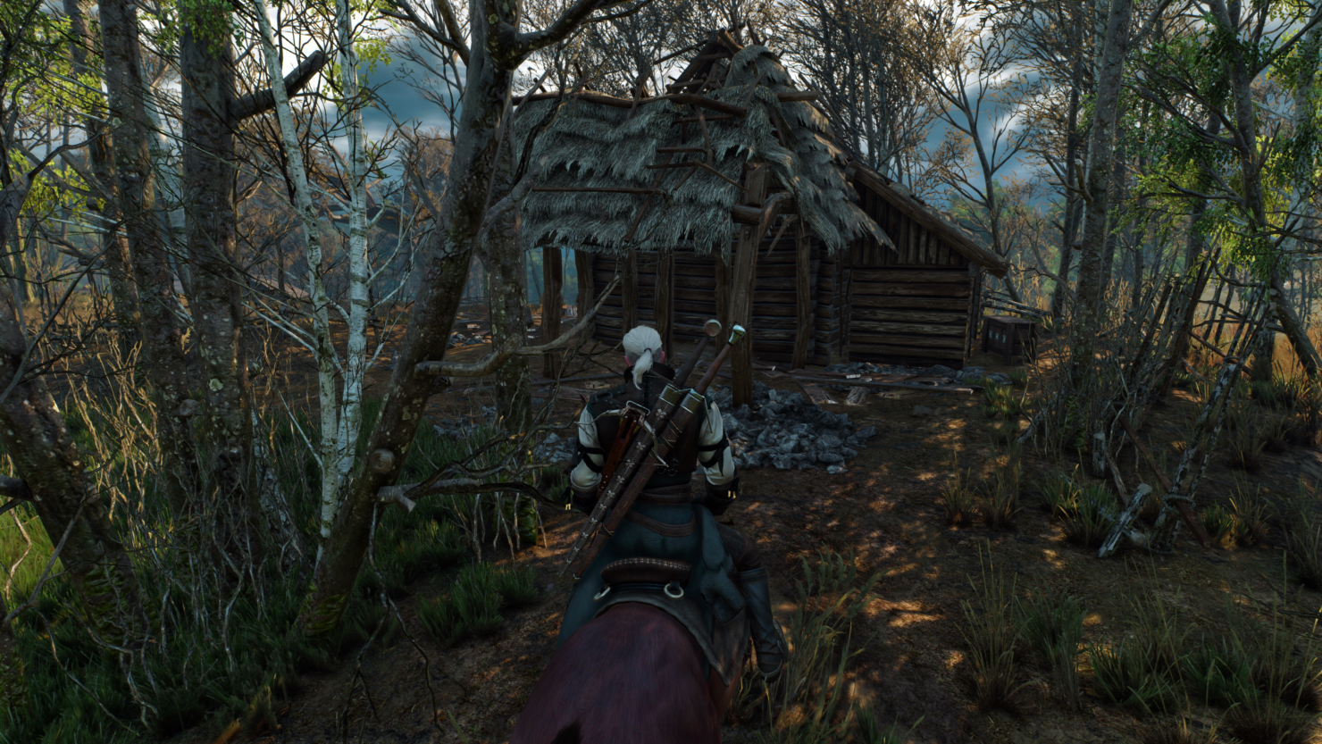 the-witcher-3-3-3