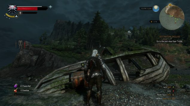 Witcher 3 (2)
