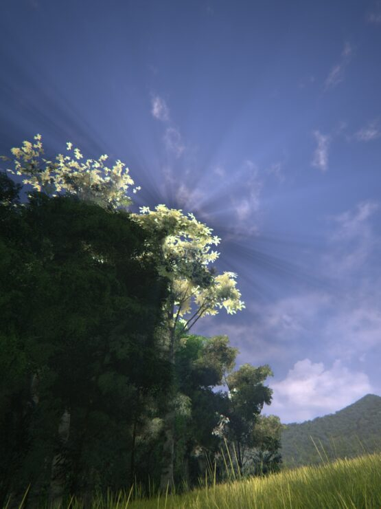 unreal-engine-4-forest-2