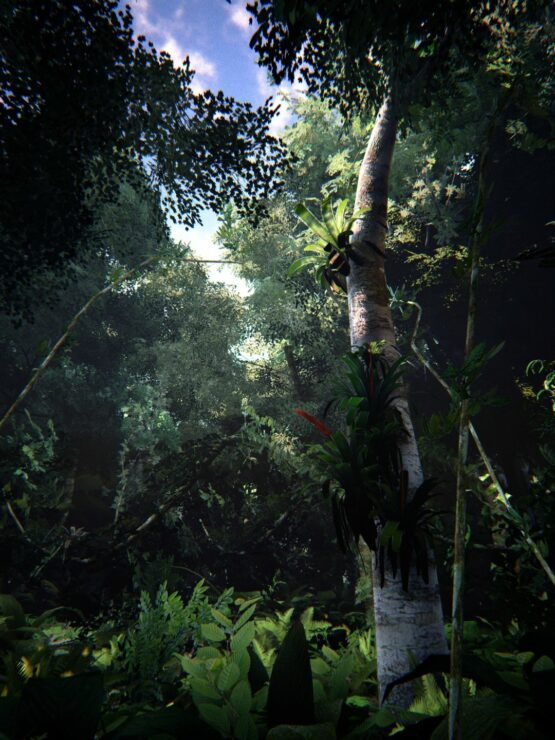 unreal-engine-4-forest-6