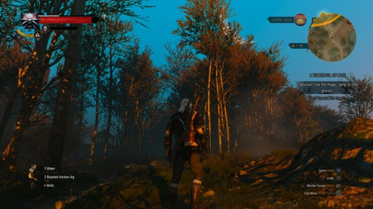 The Witcher 3 Beautiful Screenshots from the PS4 Version