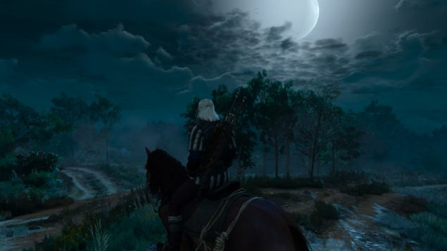 Witcher 3 (12)