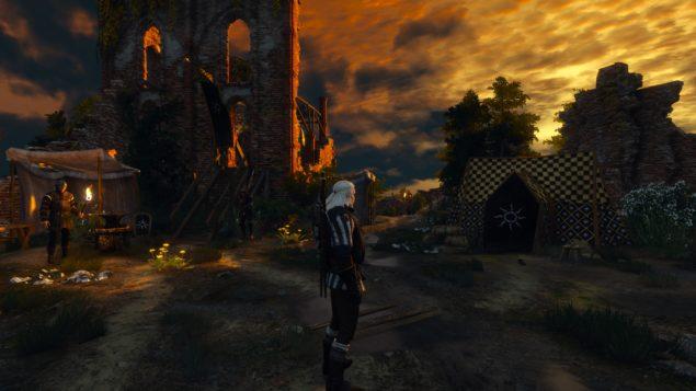 Witcher 3 (31)