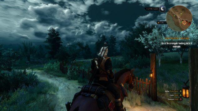 Witcher 3 (3)