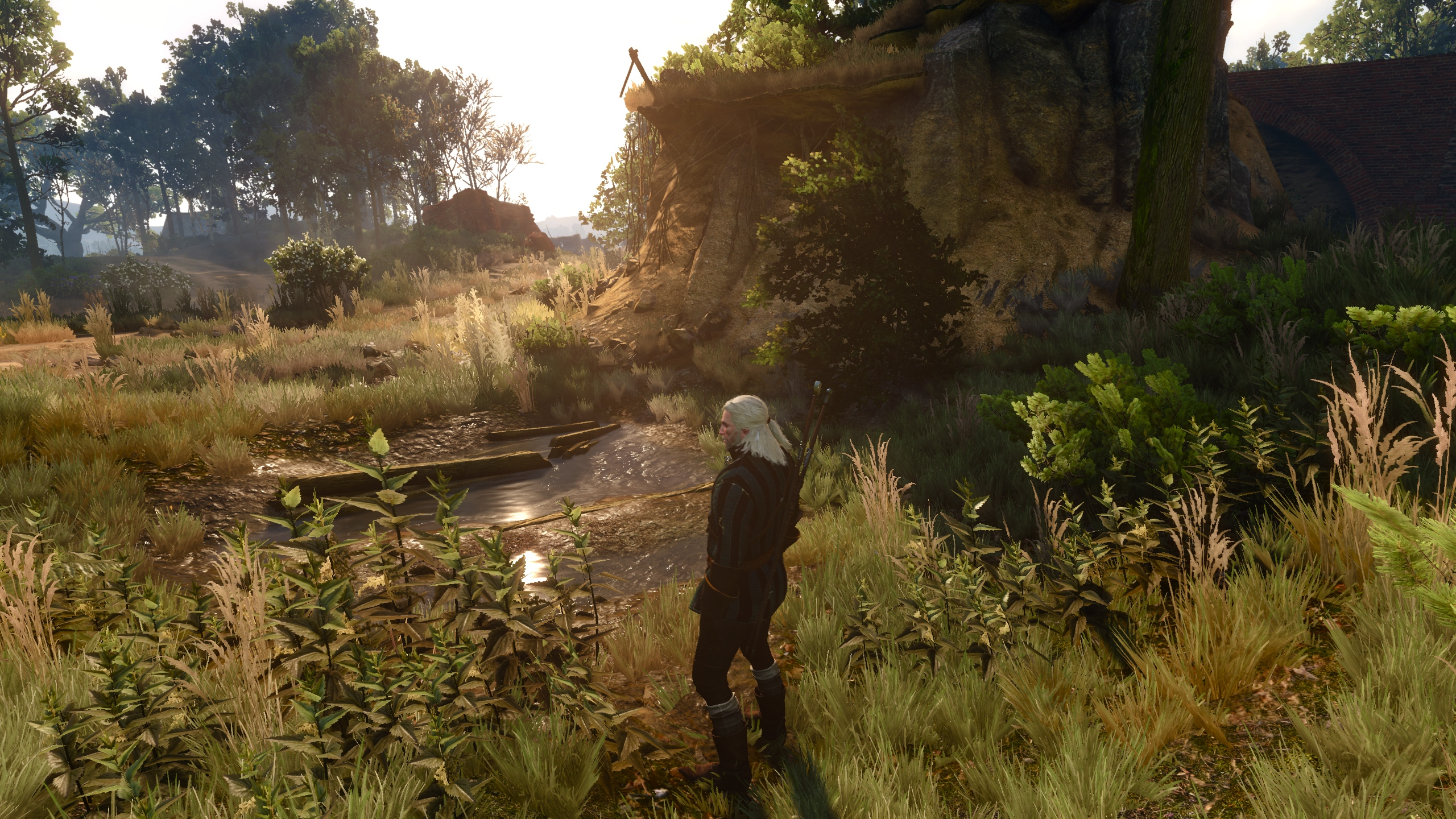 The Witcher 3 has a Script Containing over 450,000 words