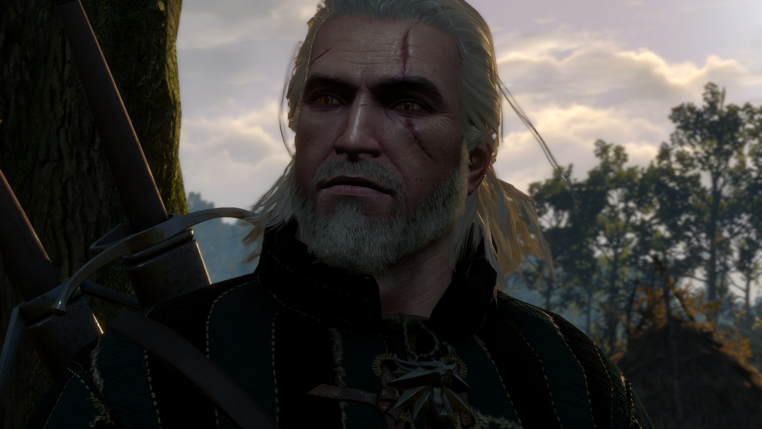 the witcher - photo #17