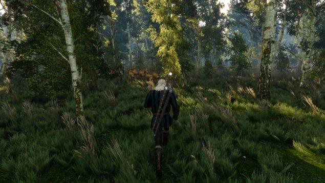Witcher 3 (48)