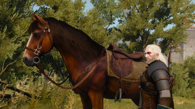 the-witcher-3-wild-hunt-nvidia-hairworks-horse