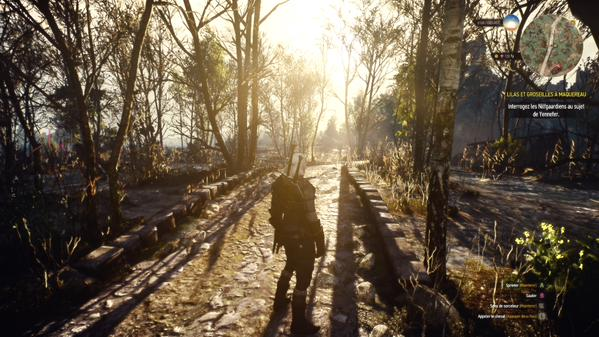 Image Result For Witcher Level