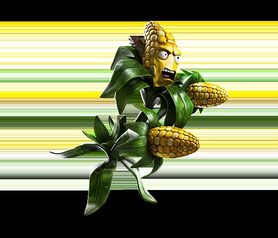 kernel-2