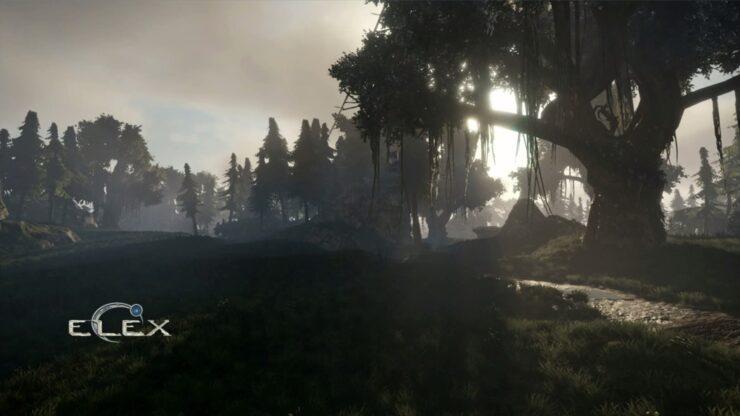 elex_forest