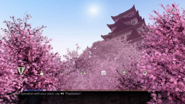 cherry-blossom-theme-8