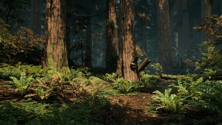 Unreal Engine 4 Forest Environment by DICE Vegetation Artist Looks Great