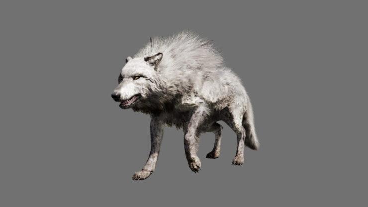 fcp_render_wolf_direwolf_leader_beastmaster_reveal_151204_5am_cet_1449251225