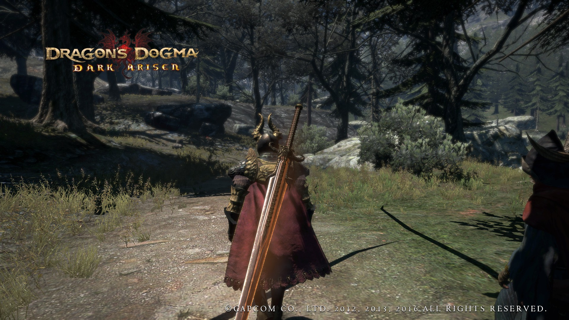 Dragons Dogma PC Review