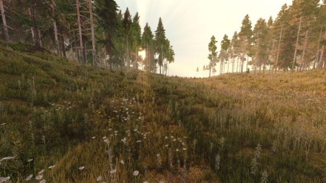 life_is_feudal_forest
