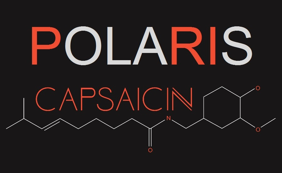AMD Polaris Capsaicin