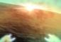 megaton_rainfall_sun