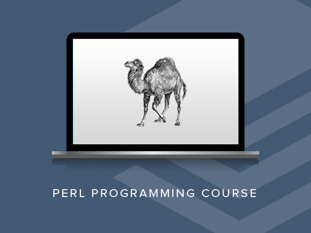 perl Full Stack Developer