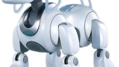 aibo-robot