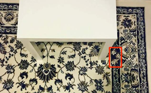 hidden iPhone on carpet reveal