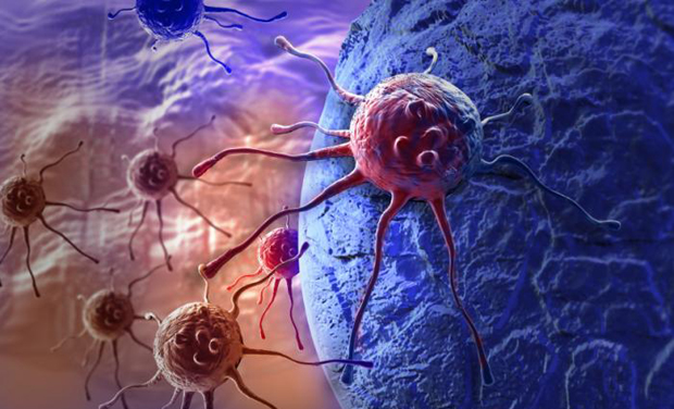 image-of-cancer-cells_0_0_0_0