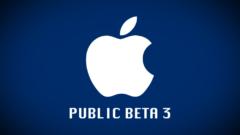 public-beta-3