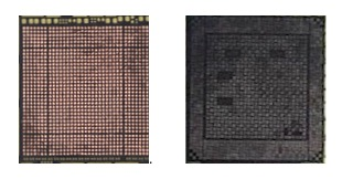 Apple A9 vs Apple A10 patterns