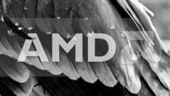 amd-avian-apu-roadmap-feature