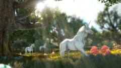 dark_and_light_unicorns