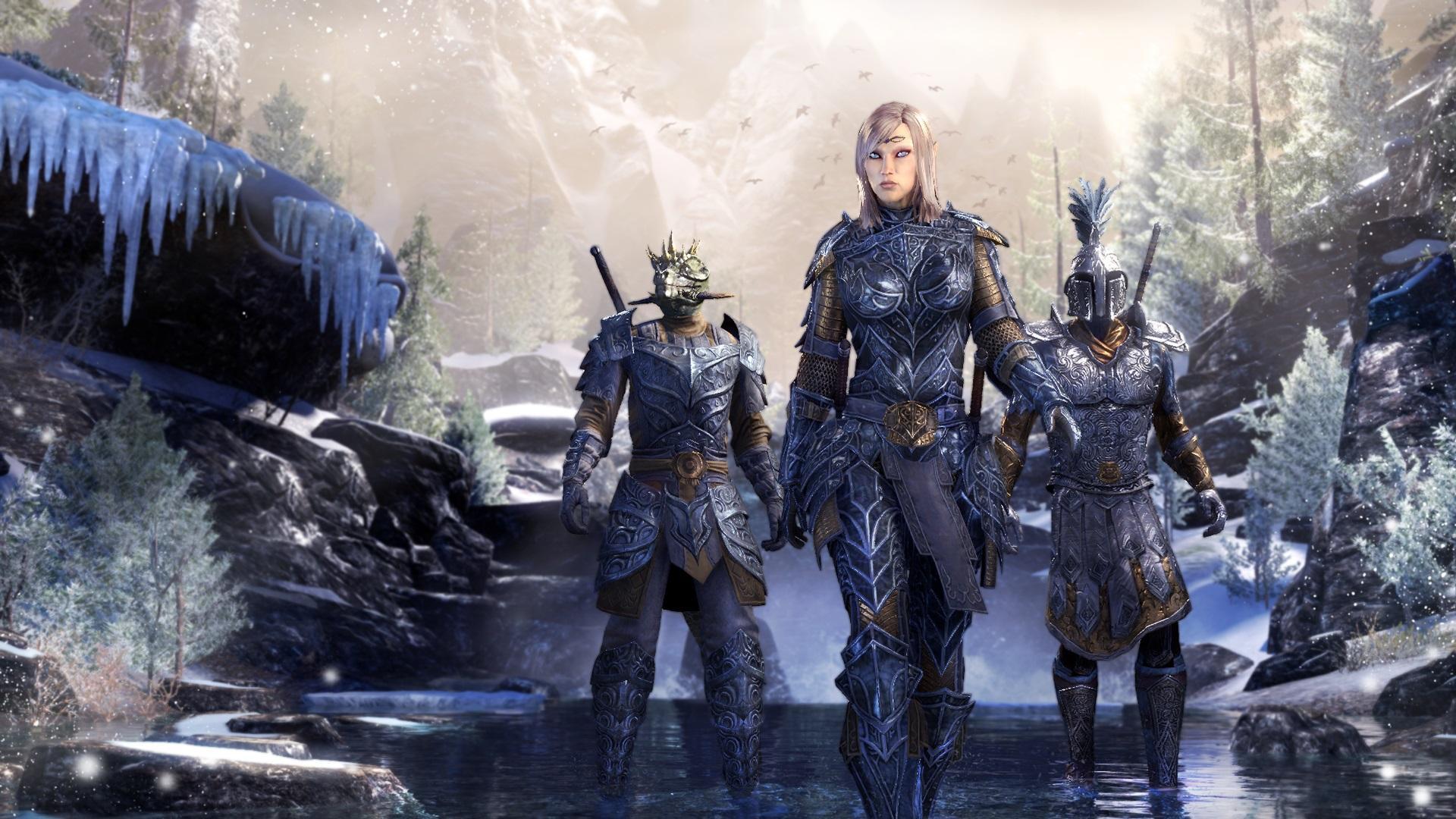 The Elder Scrolls Online Next ...