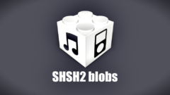 save-shsh2-blobs