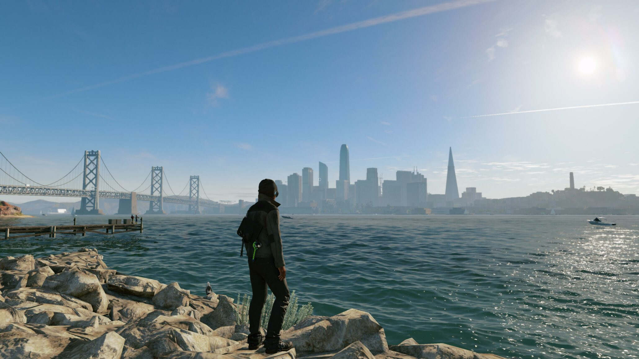 Watch Dogs  Pc Delay