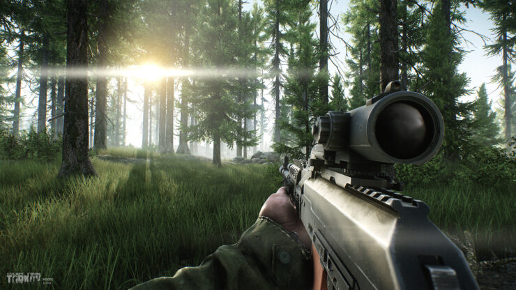 eft_alpha_woods15