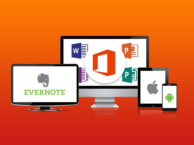 The Multi-Faceted Microsoft Office Professional Bundle