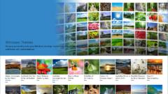windows-10-themes