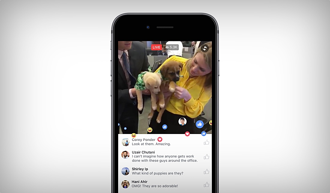how to make facebook app live