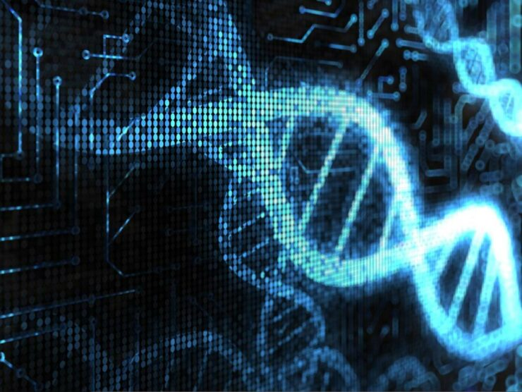 Scientists have developed a computer which is programmed by DNA. This a major breakthrough for computing technology.